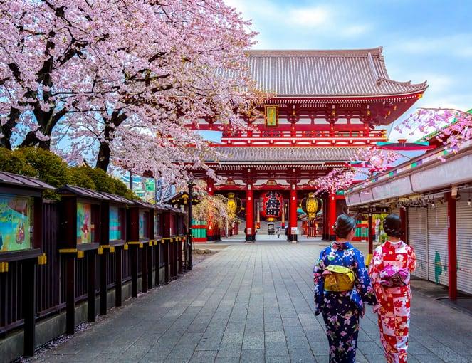 טיול מאורגן ליפן בתקופה פריחת הדובדבן ובתקופה השלכת - JR