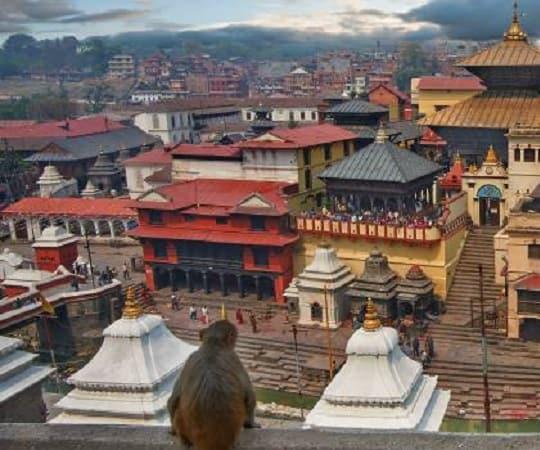 טיול מאורגן להודו ונפאל - קטמנדו