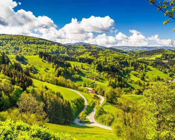 טיול מאורגן לגרמניה - כולל עמק הריין, היער השחור והדרך הרומנטית - KG
